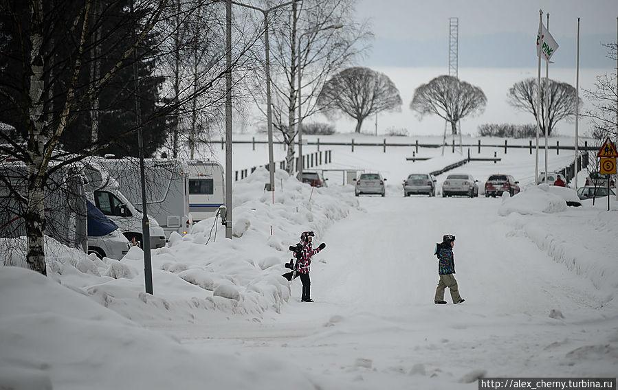 народ приезжает зимой кататься на лыжах