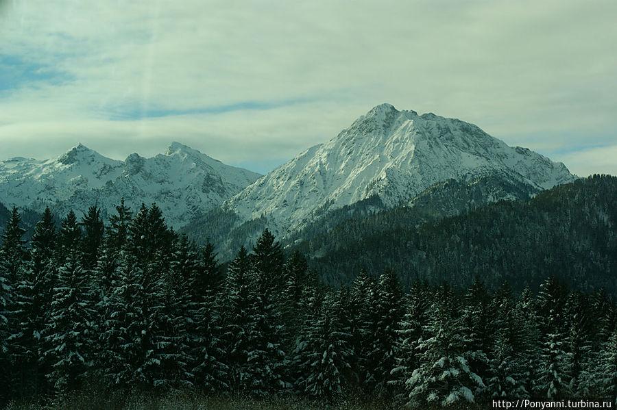 Впереди — Баварские Альпы Штайнгаден, Германия
