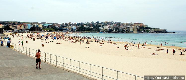 Пляж Бонди в Сиднее