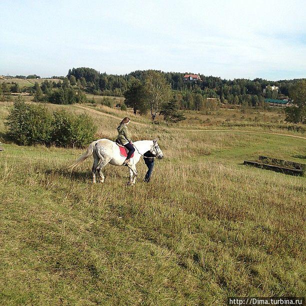 Белый конь оказался самым неспокойным. Инструктор иногда вела его сама.