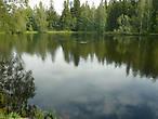 Искусственно созданное Лесное озеро