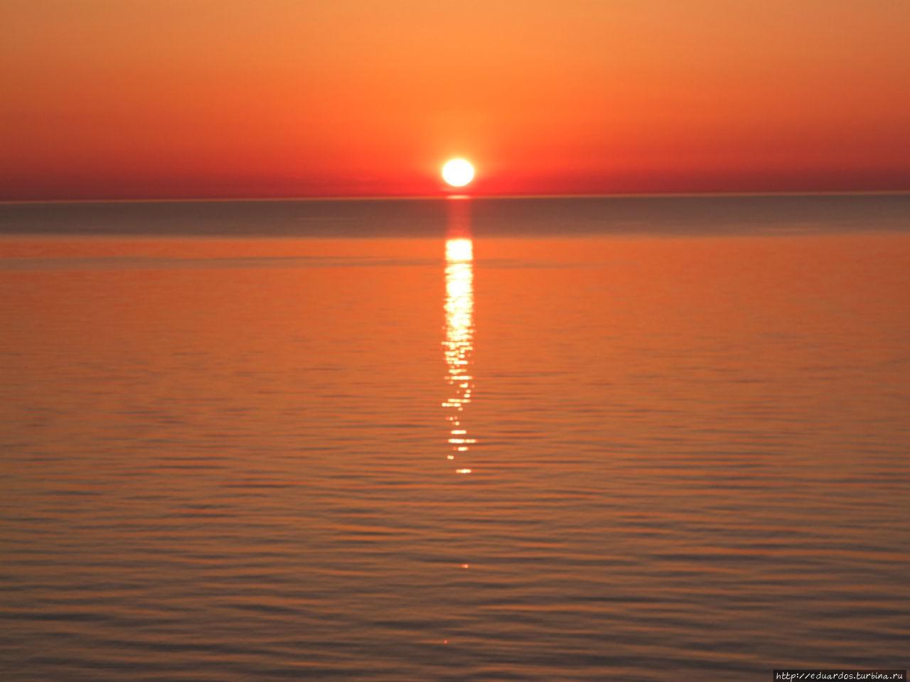 Ночь над морем и Светлогорском Светлогорск, Россия