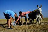 Нас заметил пастух отары, которая паслась в стороне  и специально подъехал  узнать, нужна нам вода или нет. Конечно нужна. Разве можно отказаться от воды.