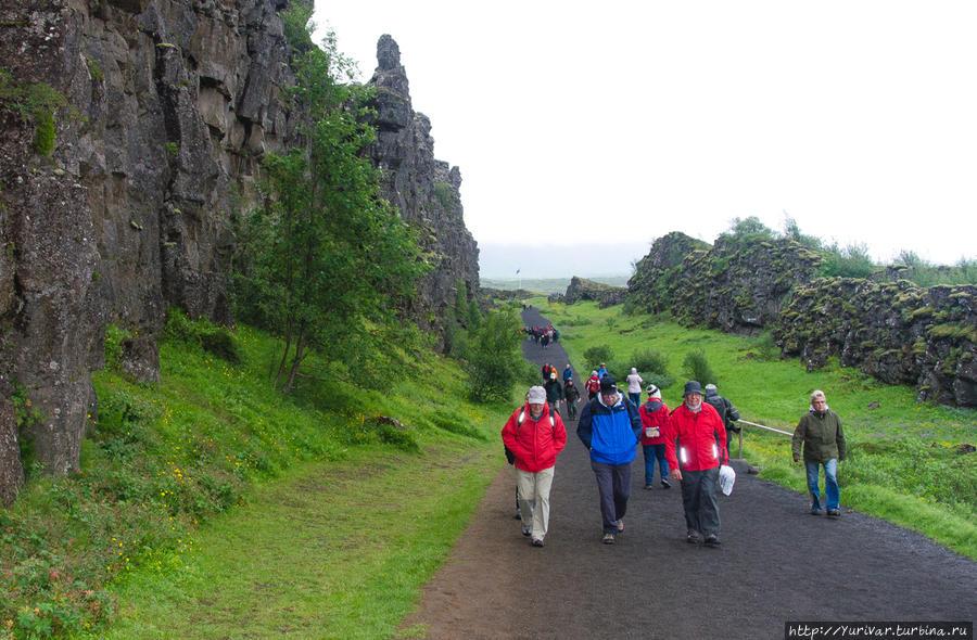 В ущелье Almannagjá (Всеобщее Ущелье) и проходили собрания древних исландцев Рейкьявик, Исландия