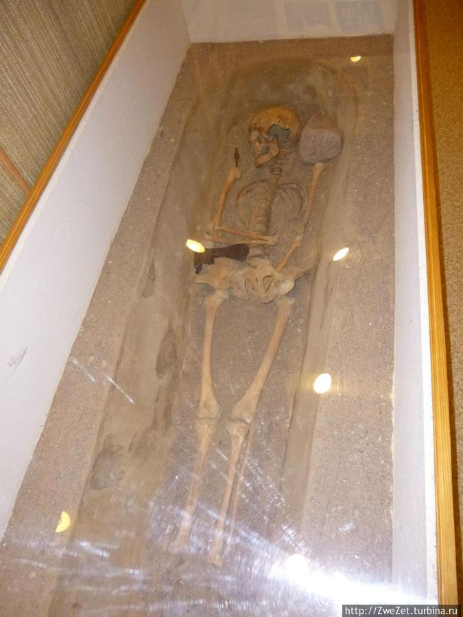 Захоронение XVI века, раскопанное в окрестностях села Вистино