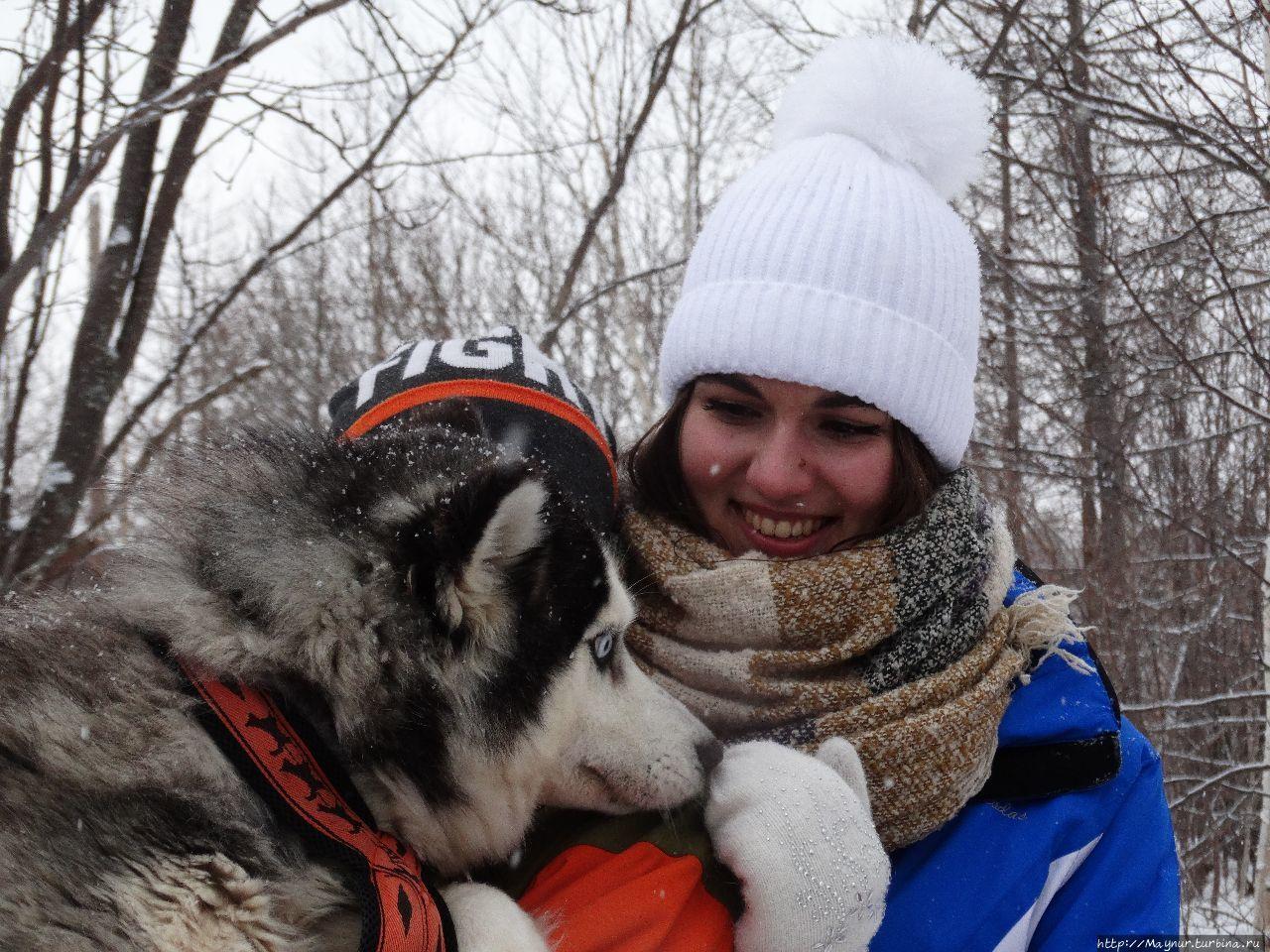Олени хорошо, но собаки лучше Южно-Сахалинск, Россия