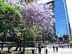Столица Сантьяго