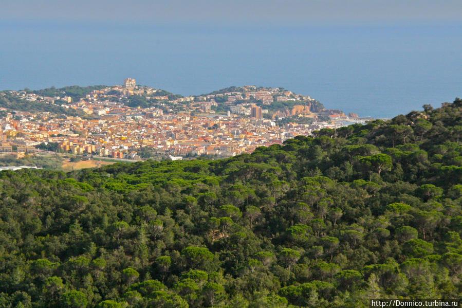Sant Feliu de Guixols скрытый за сосновыми лесами гор