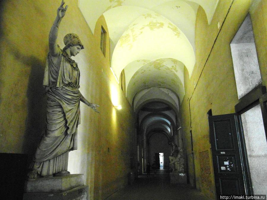 В коридорах академии.