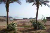 Вода Нила из озера Насера дает жизнь растительности