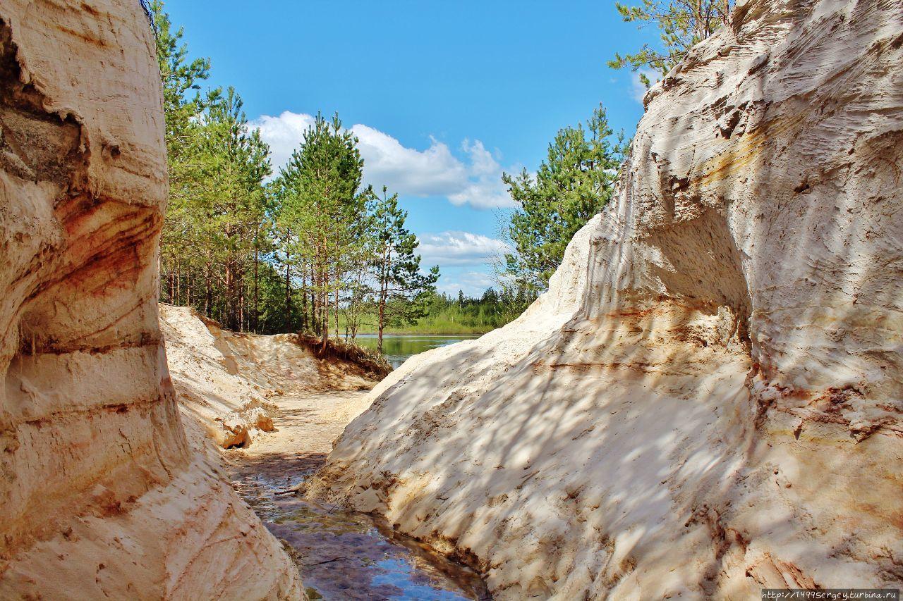 Малый Лужский каньон или История обычного лесного ручья Луга, Россия