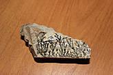 На память о восхождении на Синай, мы привезли сувенир Синайский камень,который называется НЕОПАЛИМАЯ КУПИНА.