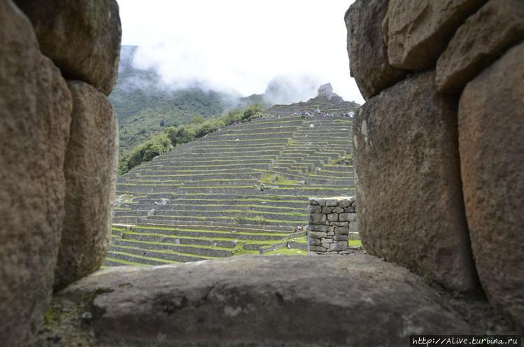Внутри стен Мачу Пикчу
