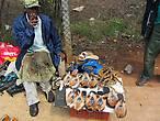 Сапожник. Продает традиционные тапочки, украшенные мехом антилопы импалы.