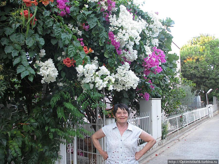 Дидим в середине лета каким его увидела моя школьная подруга Дидим, Турция