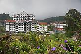 Вид от Convent Primary School на здания кондо