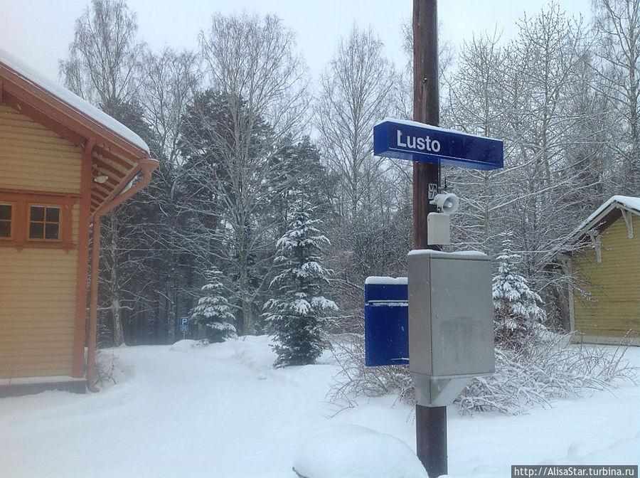 Станция Лусто