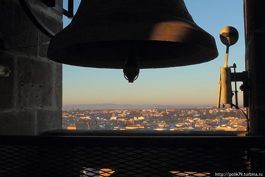 Вид с колокольни собора Баэсы.