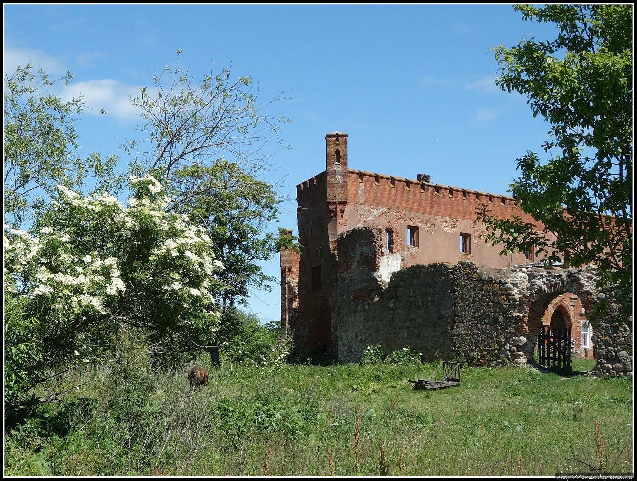 Шаакен — живописные руины орденского замка