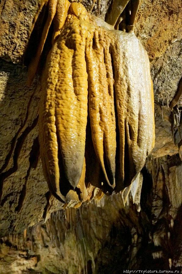Пещера Дим — достопримечательность курортной Аланьи Алания, Турция