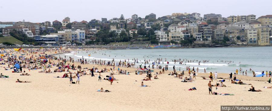 Пляж Bondy Сидней, Австралия