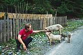 Начинаем знакомство с местным животным миром:)