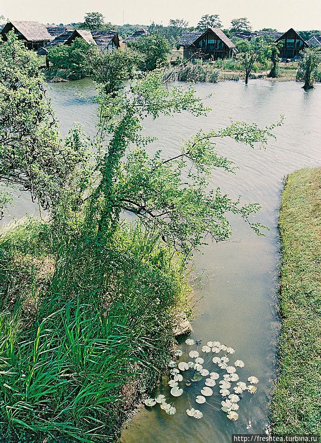 Концепция отеля — воссоздать уклад ланкийских земледельцев и экосистему вокруг водоема, питающего рисовые поля.