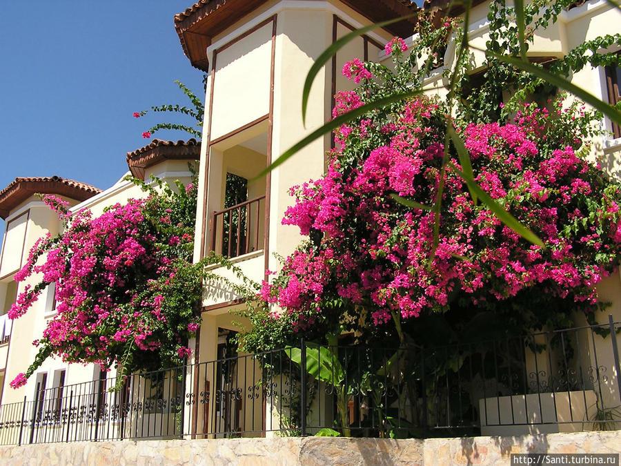 Caria Holidays Resort Мармарис, Турция