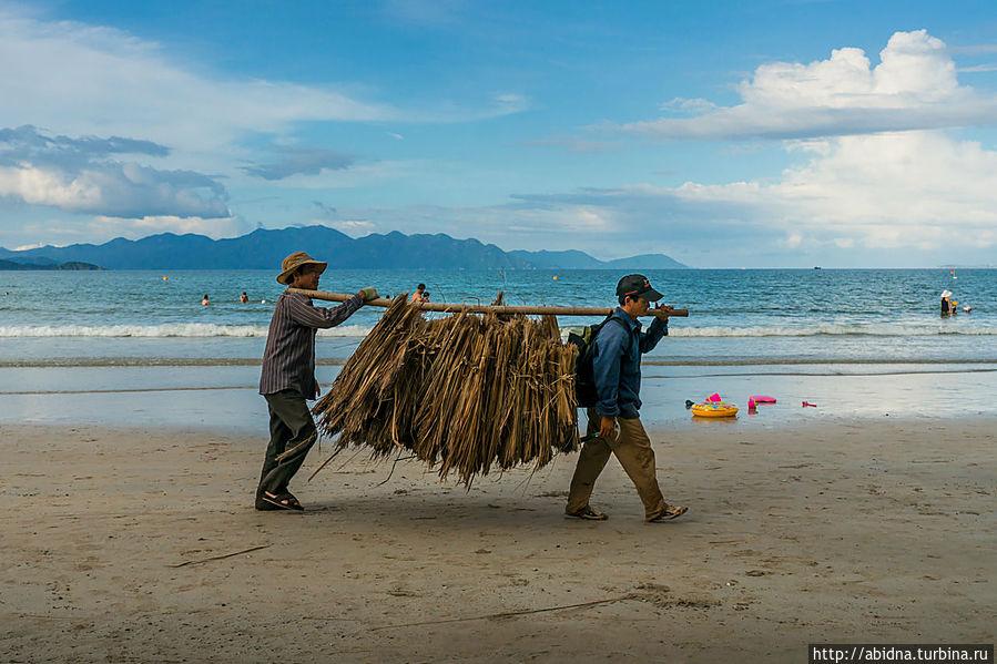 Рабочие обновляют соломенные крыши зонтиков на пляже Нячанг, Вьетнам