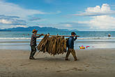 Рабочие обновляют соломенные крыши зонтиков на пляже