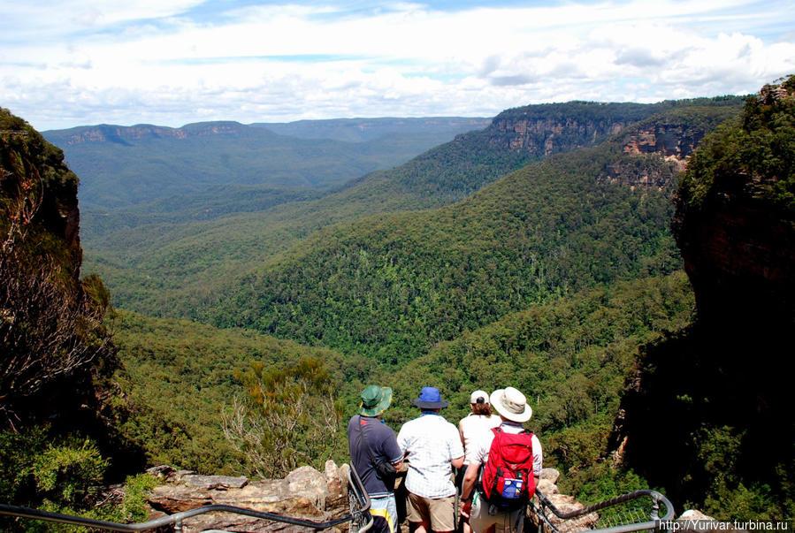 Дали Голубых гор Сидней, Австралия