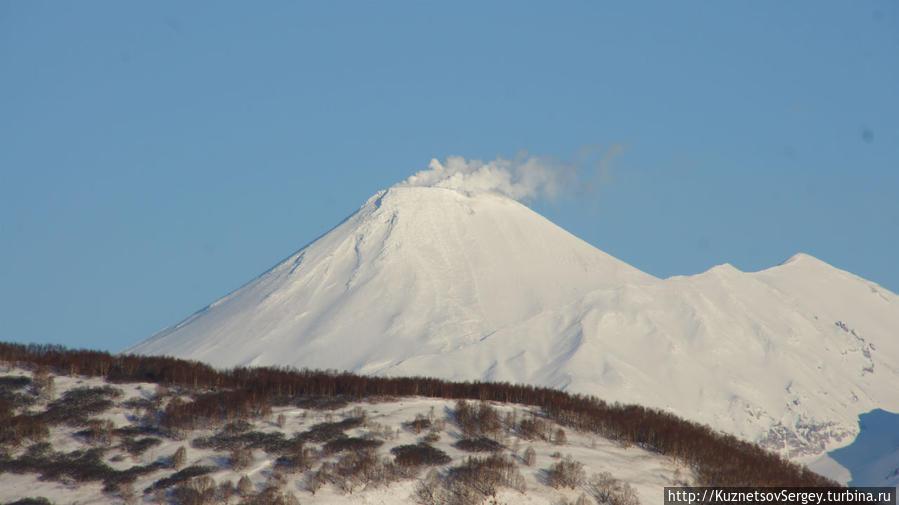 Авачинский вулкан от Халактырского пляжа