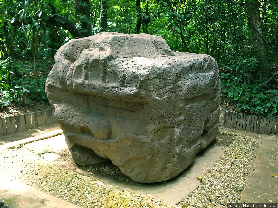 Голова змеи-ягуара, фантастического животного, которому приписывались сила и отвага. ягуар символизирует землю , а змея — воду, вместе получается плодородие. 1200-900 лет до н.э.