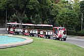 В парке можно покататься и прокатить своих деток на паровозике.
