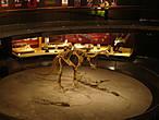 В подвале музея площадью 300 м² проводятся временные выставки на различные темы.