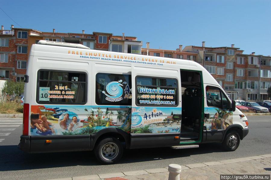 Так выглядят микроавтобусы, едущие в аквапарк