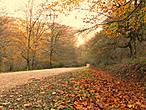 Что такое осень в Кантабрии?