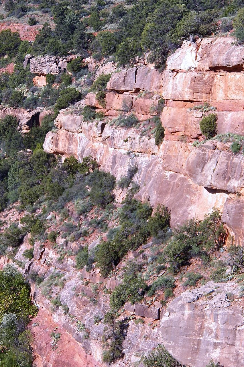 my experience with nature in the gold creek canyon Over the years, his schemes to extract a fortune in gold from the bighorn canyon placer deposits led to the formation of three gold mining companies: hidden canyon gold mining, big horn gold dredging, and gold creek consolidated dredging companies.