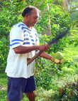 Открыть кокосовый орех — большое искусство