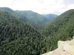 Ребристые скалы, поросшие темными шатрами елей. Вид с Томашовского выгляда.