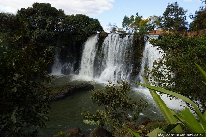 Водопад Лилии