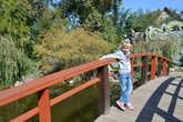 Девица на мосточке.