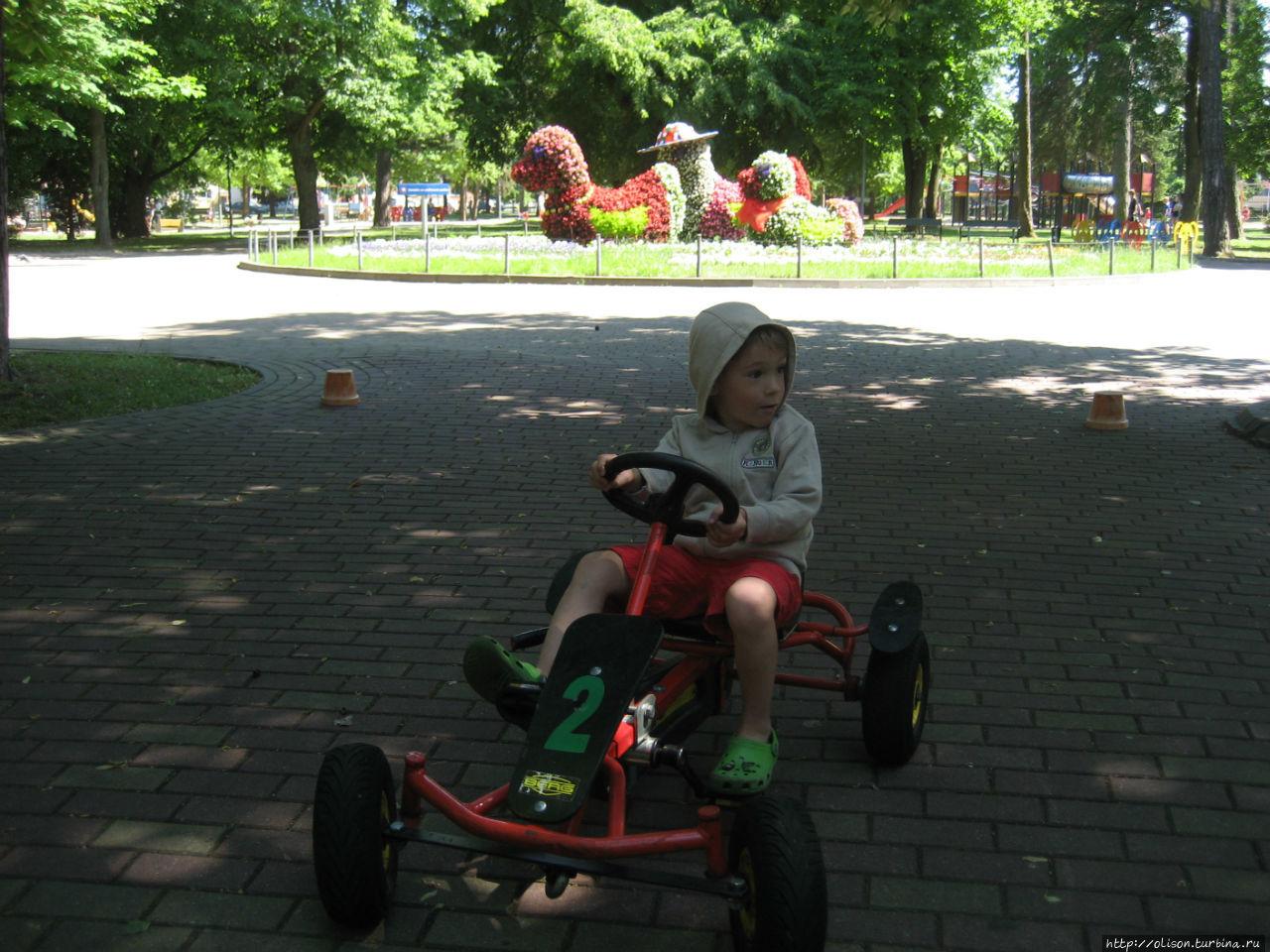 В детском парке