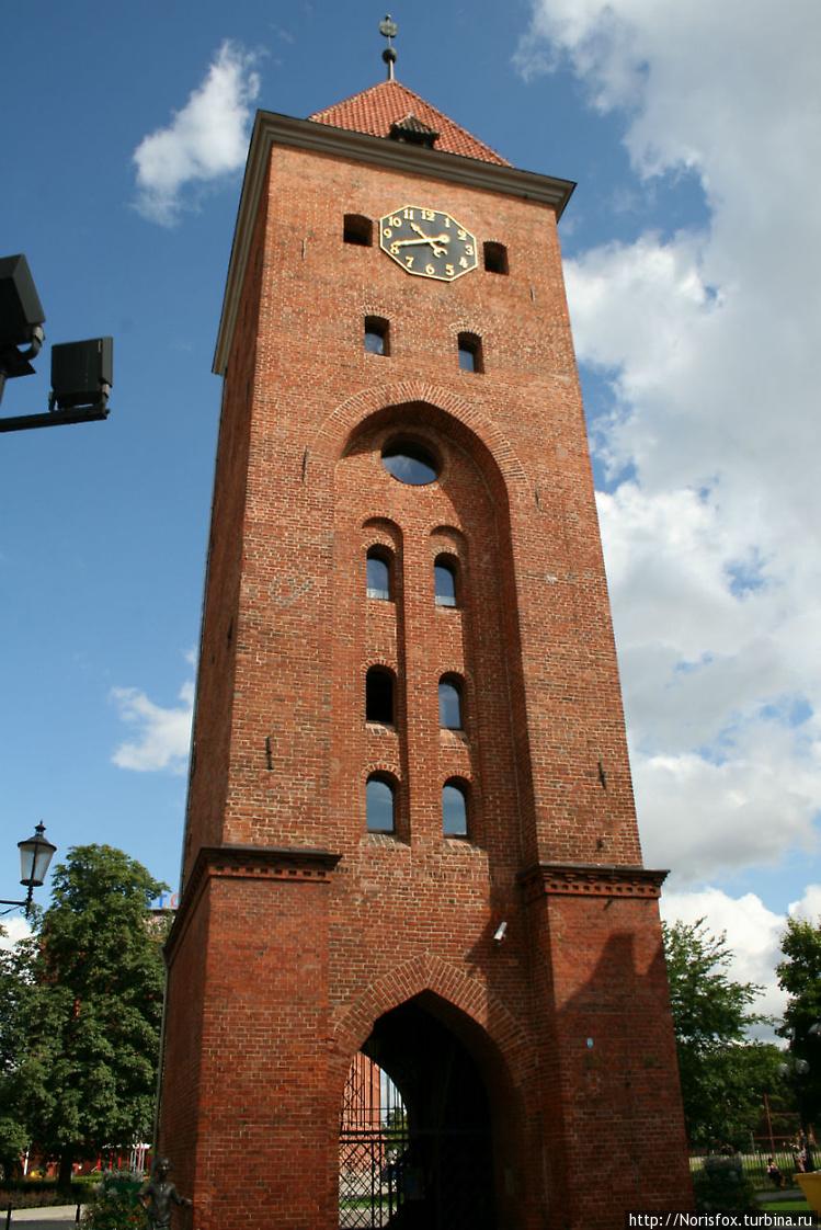 Башня Брама Торгова (Рыно