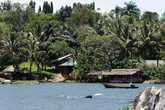 Берег Нила