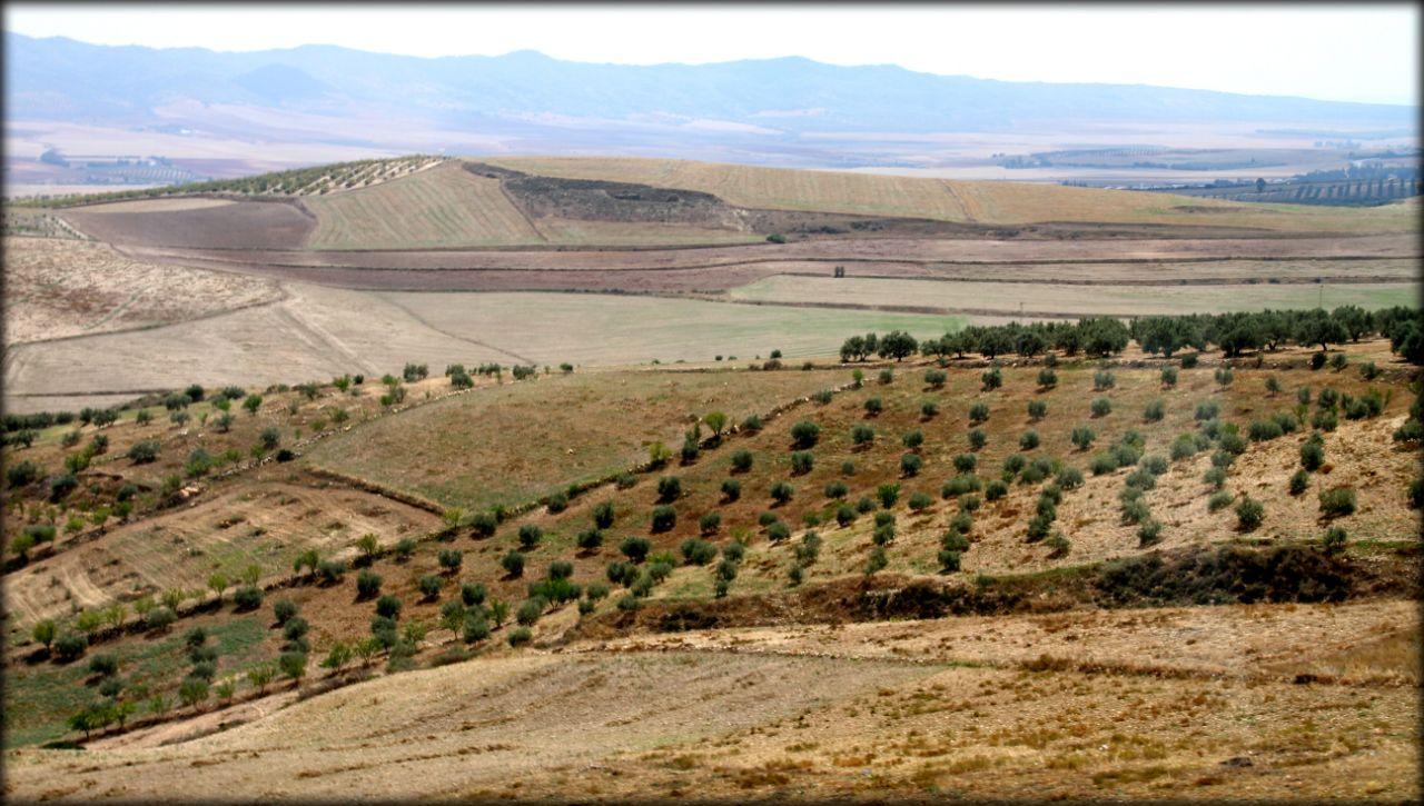 Северный треугольник или новое открытие Туниса Табарка, Тунис