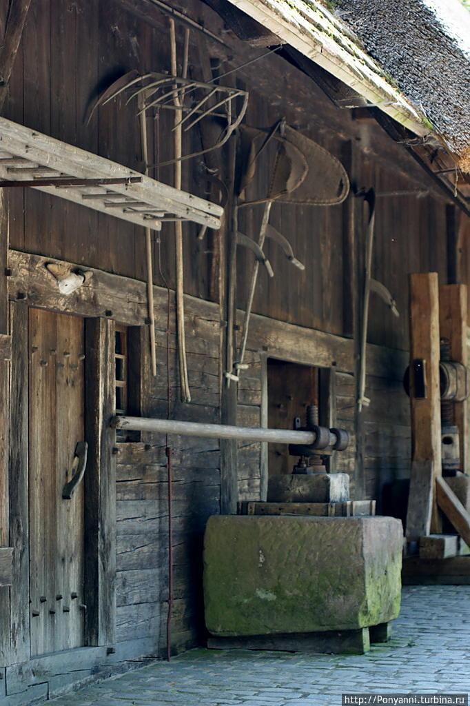 Самое старинное здание му