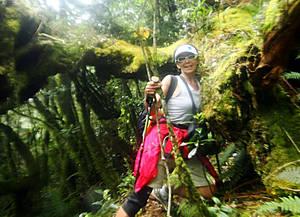 В глубине филиппинского леса. Здесь главное — не сойти с тропы...