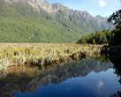 Зеркальное озеро на пути к фьорду Милфорд Саунд