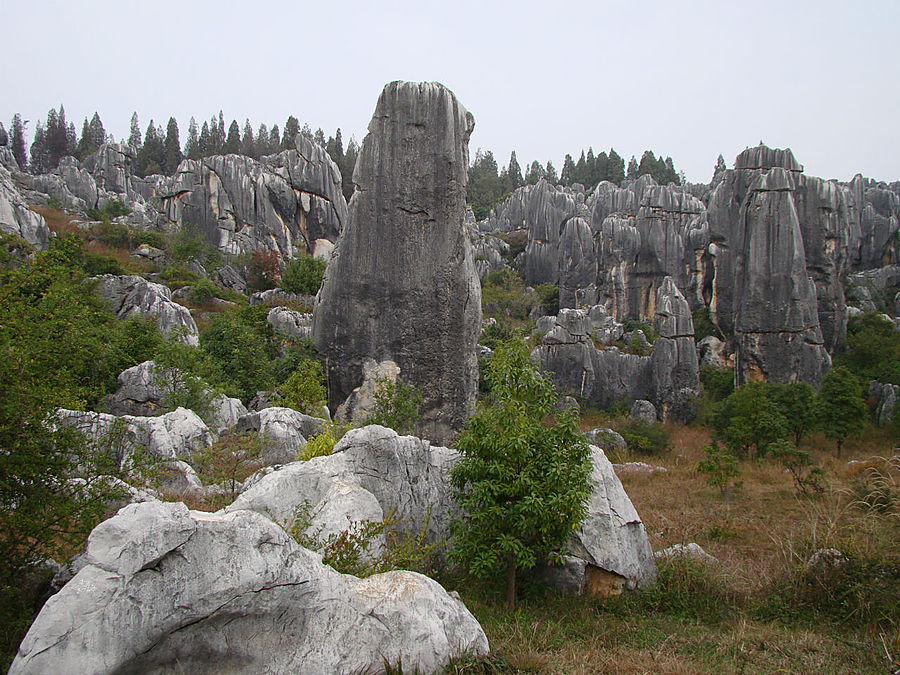 Осень в Каменном лесу Куньмин, Китай